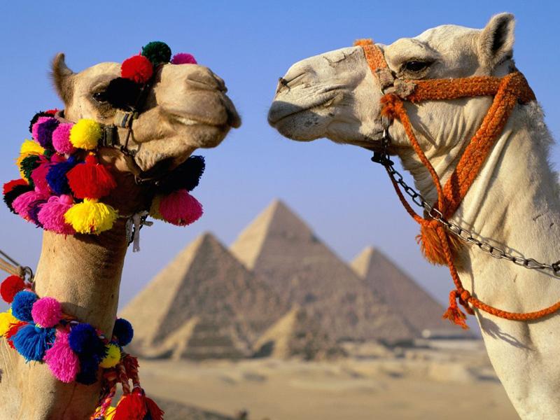 египет из перми горящие туры